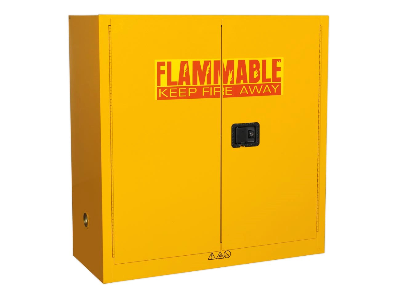 Hazardous & Flammables Storage
